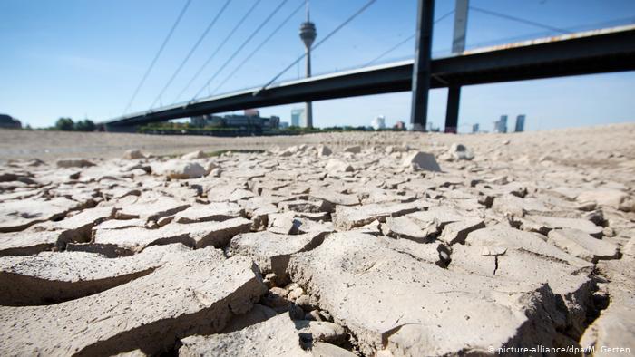 Düsseldorf Trockenheit am Rhein (picture-alliance/dpa/M. Gerten)