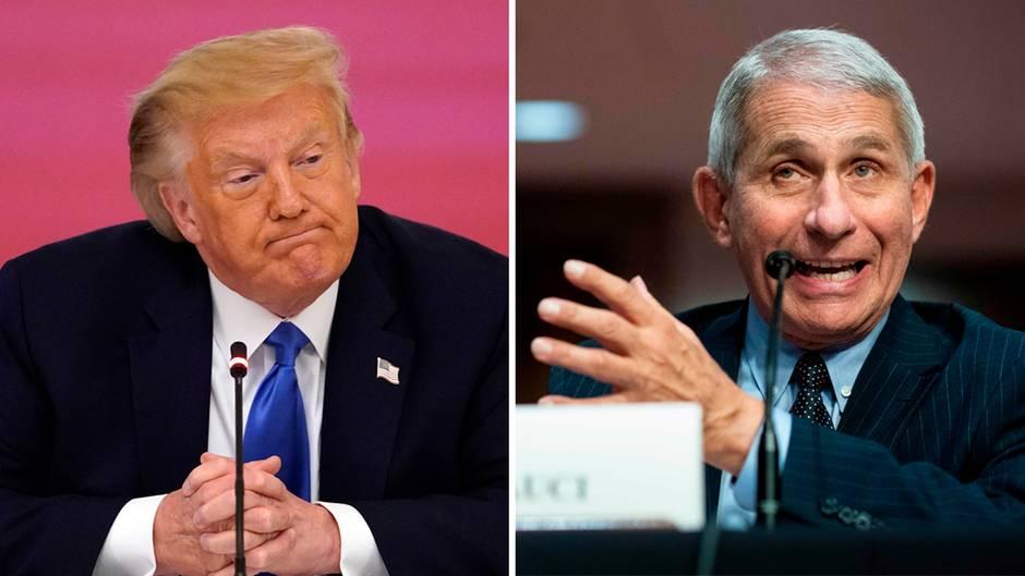 Donald Trump weist Meldungen zurück, dass das Weiße Haus gegen den US-Immunologe Anthony Fauci vorgehe.