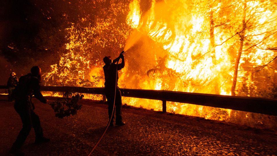 Athen, Griechenland. Freiwillige Helfer unterstützten einen Feuerwehrmann bei den Löscharbeiten eines Waldbrandes